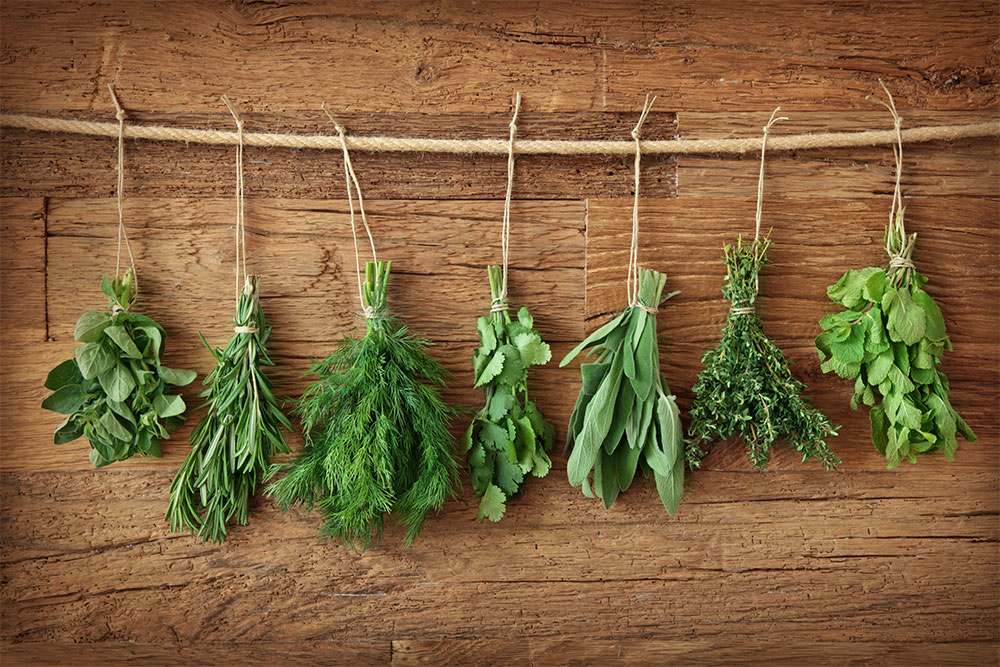 Herbs drying for digestive health